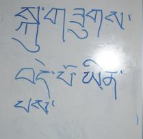 yu Tibetan Class Oct 26 2011 Tashi Delek!